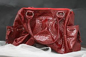 Самые модные сумки 2009 года!