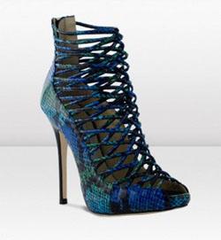 Модные туфли 2010