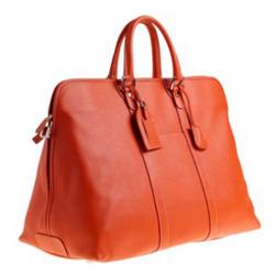 Новости Украины: Модные сумки 2010 (Фото.