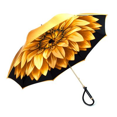 Модные зонты 2011 года
