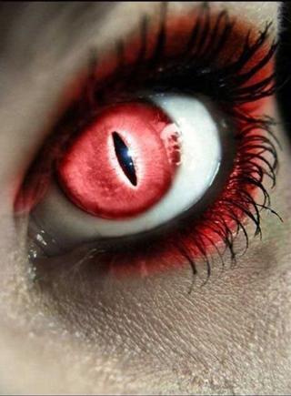 Как выбрать стильные контактные линзы