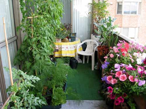 Озеленяем балкон
